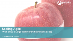 LeSS Framework - Fact Sheet