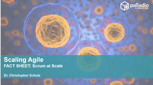 Scrum at Scale - Fact Sheet